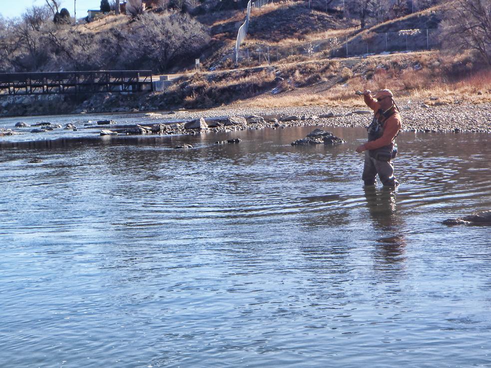 Arkansas river tailwater for Arkansas river colorado fishing