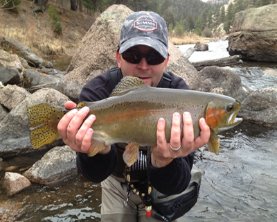 DAVE CANYON RAINBOW