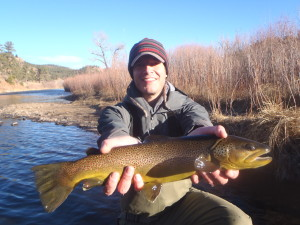 January Brown Trout