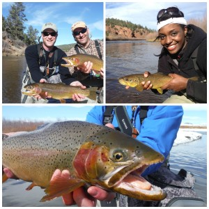 Colorado's Public Fishing Treasures
