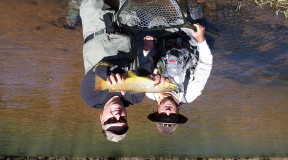 Fly Fishing Guides in Colorado