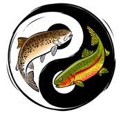 Zen Fly Fishing Tenkara Guide