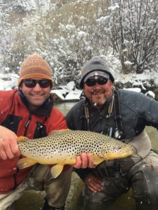 Boxwood Gulch Brown Trout