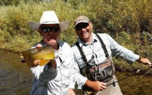 fall-brown-trout-fish-flop