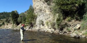 fly fishing denver