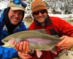 boxwood-winter-rainbows