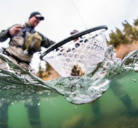 Colorado Fly Fishing Guides - 5280 Angler