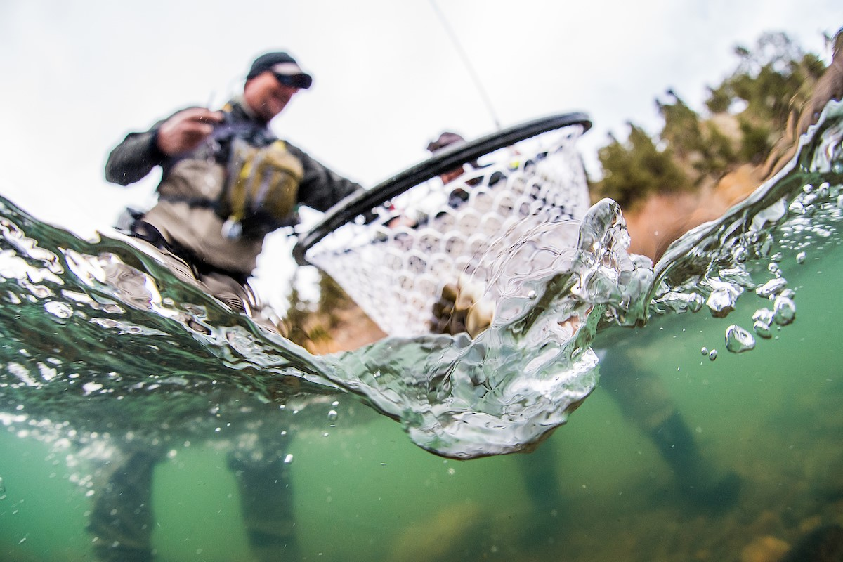 How to Choose a Fly Fishing Net - 5280 Guides' Choices & Tips