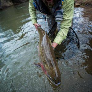 Keep Em Wet fly fishing 5280 Angler