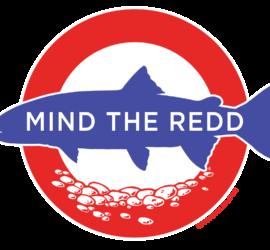 MIND THE REDD